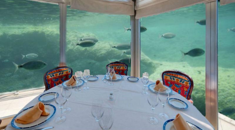 Vistas submarinas en el Gran Sol de Alicante