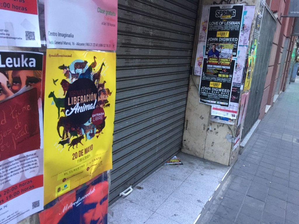 Marisol Moreno comparte que se empapele Alicante de carteles animalistas