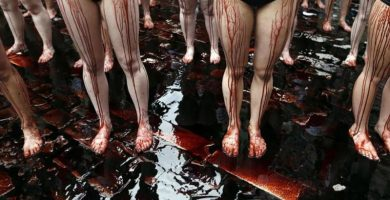 Los veganos arremeten contra los antitaurinos por el derramamiento innecesario de sangre de remolacha