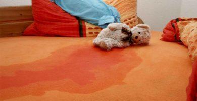 Luto en Alicante por la licuación de miles de personas anoche en sus camas