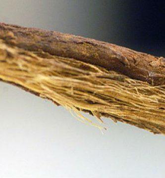 La Policía devuelve al vendedor de regaliz de Maisonnave los palos mordisqueados