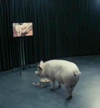Que Barcala se folle a un cerdo, entre las condiciones de Echávarri para dimitir