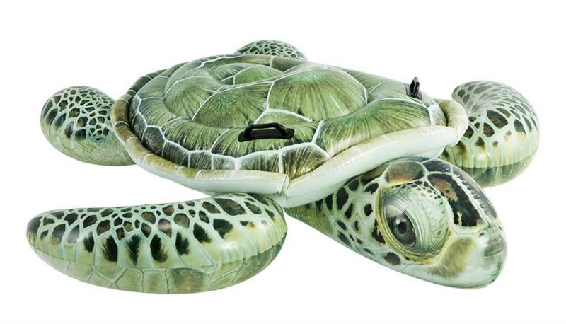 Comprar online flotador tortuga