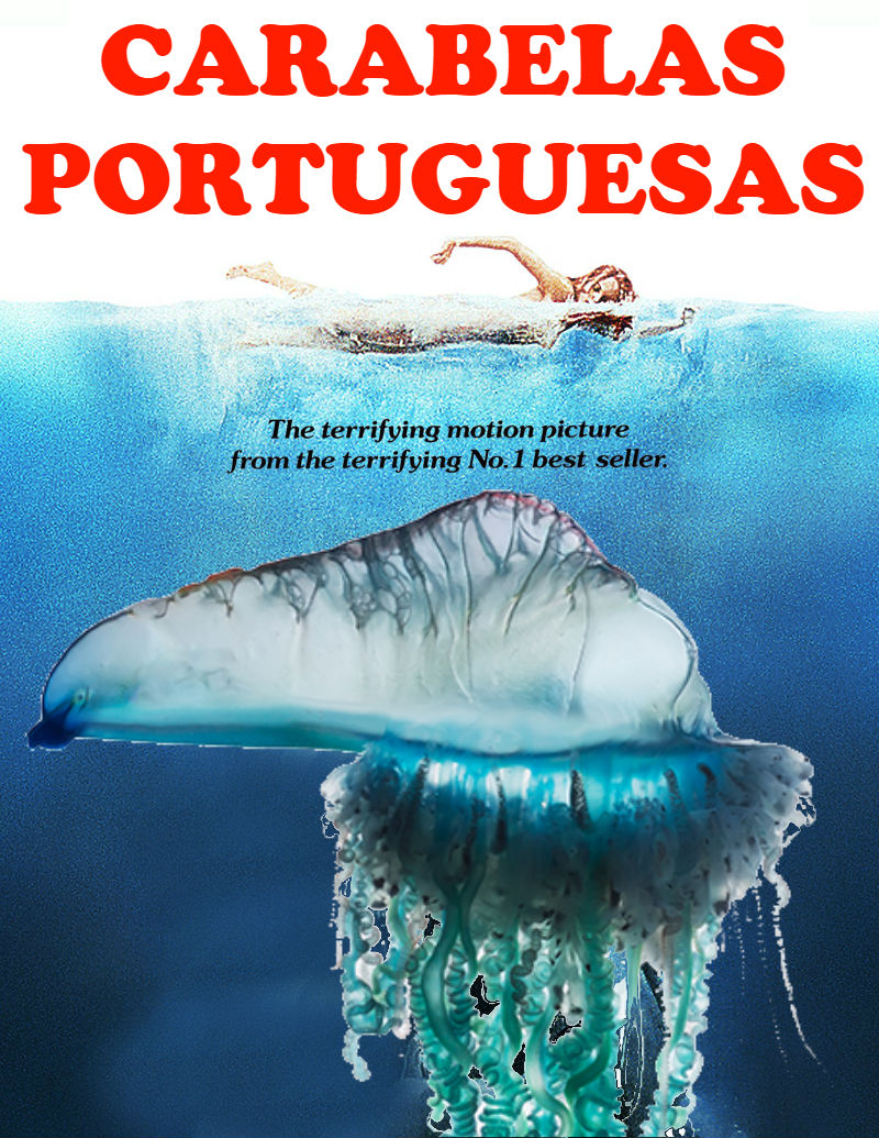 CARABELAS PORTUGUESAS