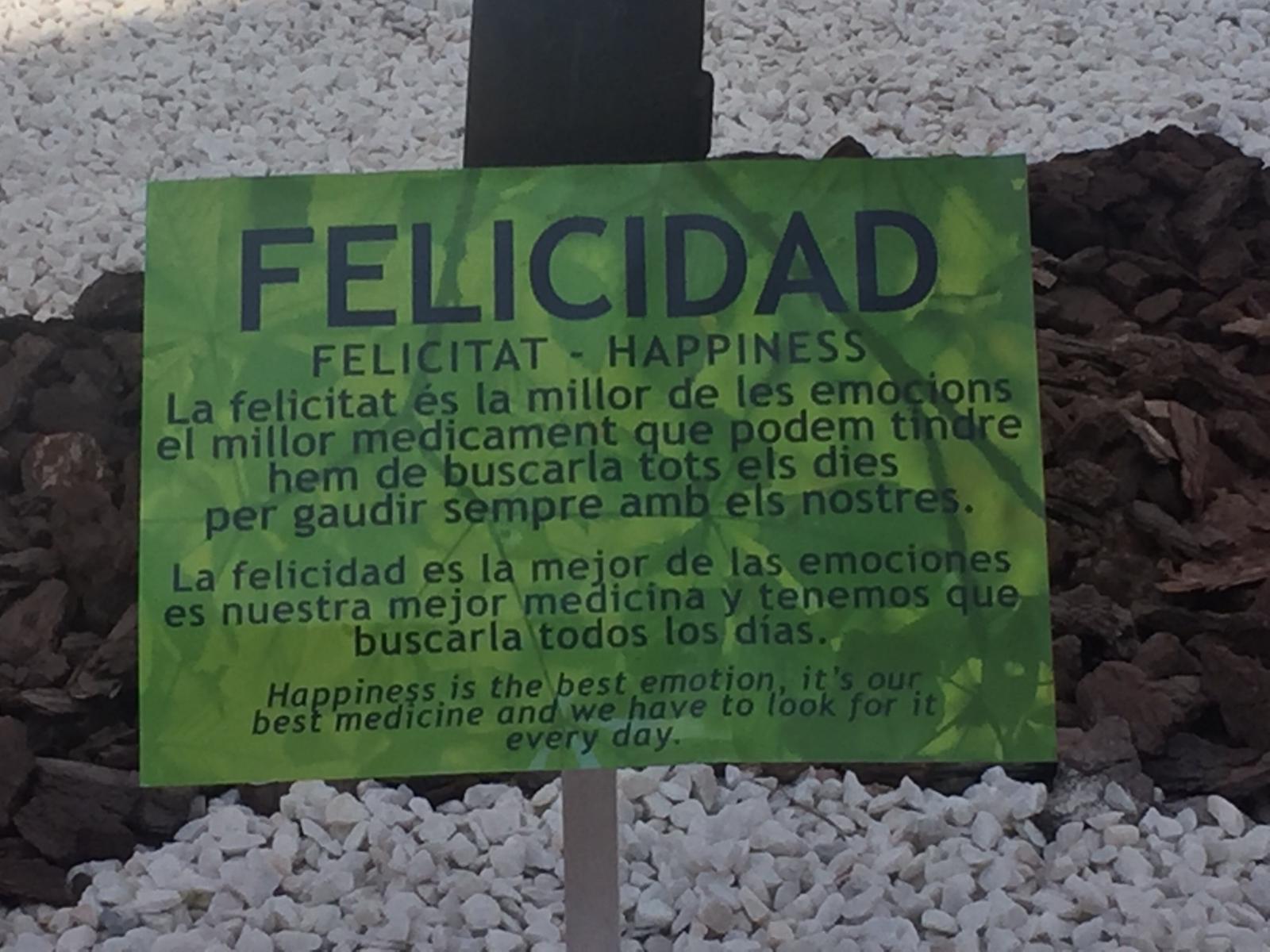 felicidad hoguera sagrada familia